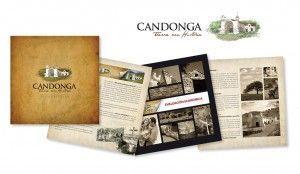 candonga web
