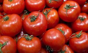 tomates.1