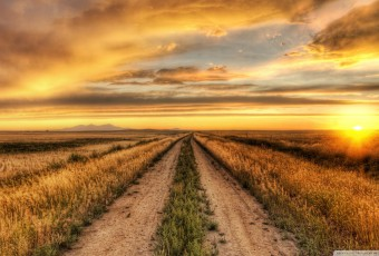 magnificent-road-at-sunset-hdr