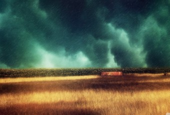lluvia en el campo 03