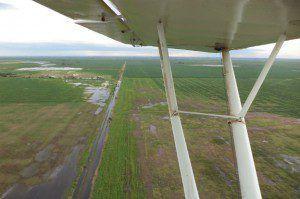 aereacampo.1