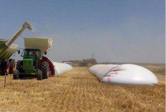 Agro Argentino231 Cosecha de soja, comienza la controversia entre gobierno y productores 22Mar15