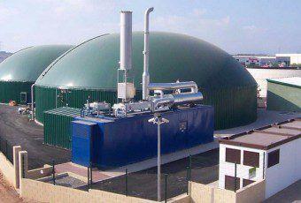 planta-de-biog-s