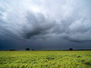 lluvias_argentina_campo_fyo_0