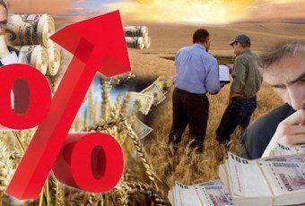 rentabilidad agricola 327390