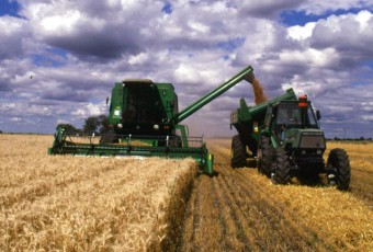 cosecha_de_trigo_argentina_agrofy_agrofynews