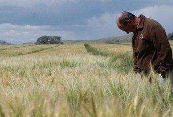 encuesta_de_productores_crea_agrofy_news_0