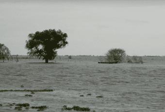 inundaciones campo