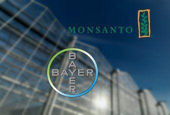rin-Bayer_Monsanto