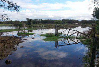 campo inundado lafrancia5