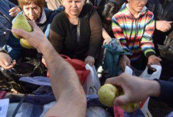 frutas plaza de mayo 57bd65f70f734_554_266!