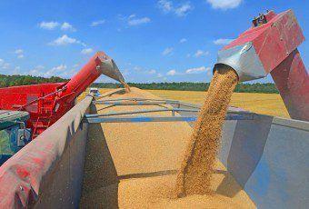 transporte de granos y cereales 0011680914