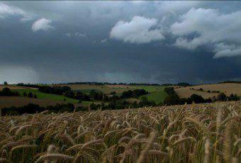 243267207-campo-de-centeno-nube-de-lluvia-sarre-alemania-region-con-colinas