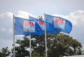 inta-banderas-640x415