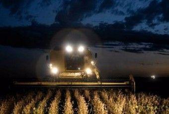 crecimiento-cereales-produccion-replegaria-principal_claima20161111_0285_28
