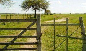 inmobiliario_rural_agrofy_news_4