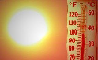 calor mundo agro cba 98475465